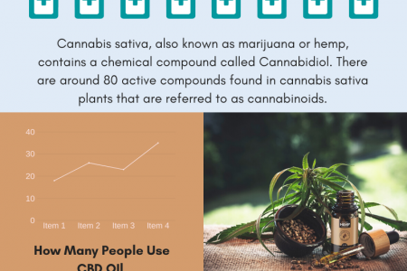 The Health Benefits of CBD Oil Infographic