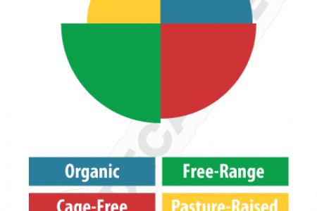 The Healthiest Egg Label Infographic