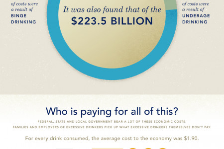 The Hidden Costs of Alcoholism Infographic
