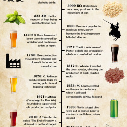 the history of fermentation essay History the history of beer making is utilize it to make beer by fermentation which would of this essay and no longer wish to have the essay.