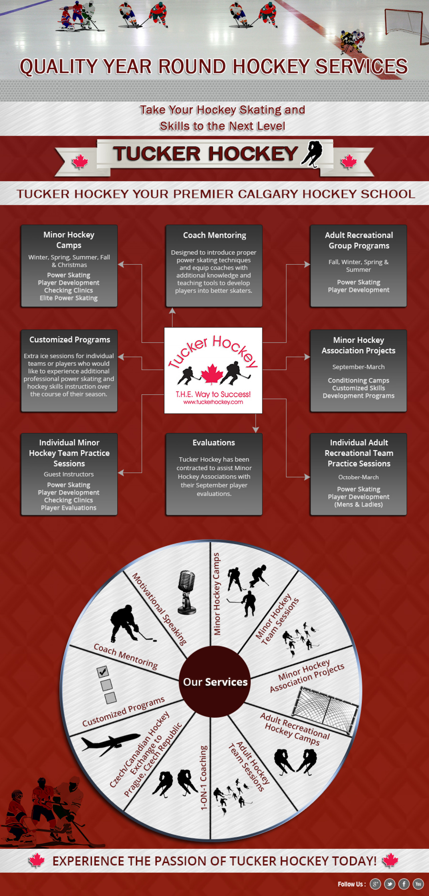 The Hockey Training Programs Infographic