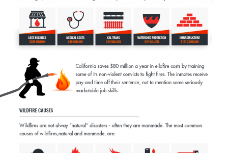The Hotbed of US Wildfires Infographic