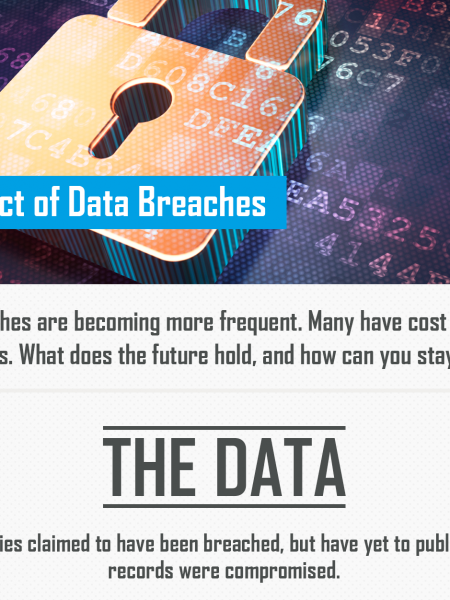 The Impact of Data Breaches Infographic | PaymentVision Infographic