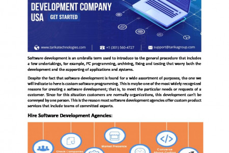 The Importance of Custom Software Development Services Infographic