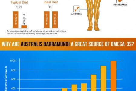 The Importance of Omega-3s Infographic