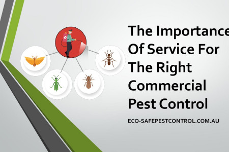 The importance of service for the right commercial pest control Infographic