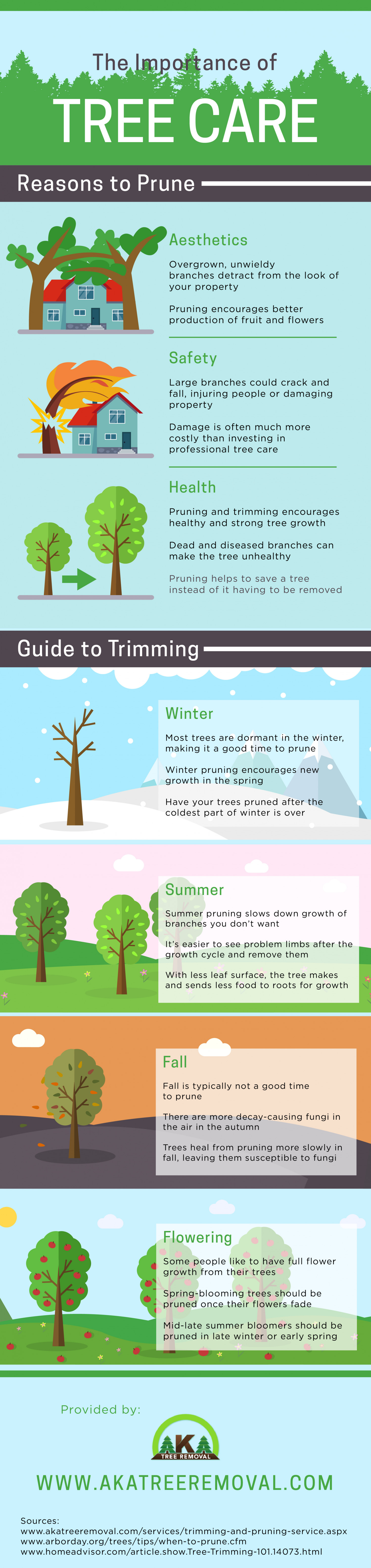 The Importance of Tree Care Infographic
