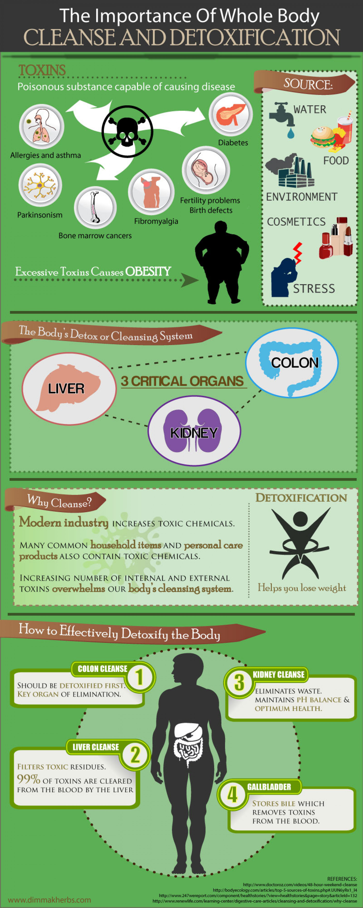The Importance of Whole Body Cleanse and Detoxification Infographic
