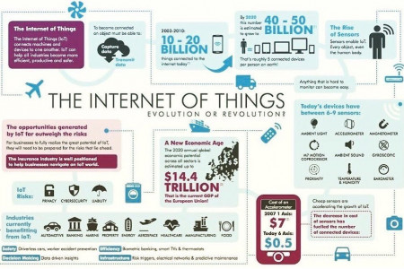 The Internet of Things Evolution of Revolution? Infographic