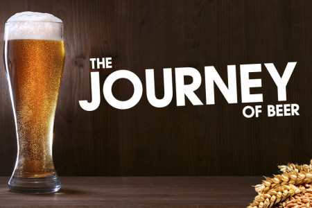 The Journey of Beer Infographic