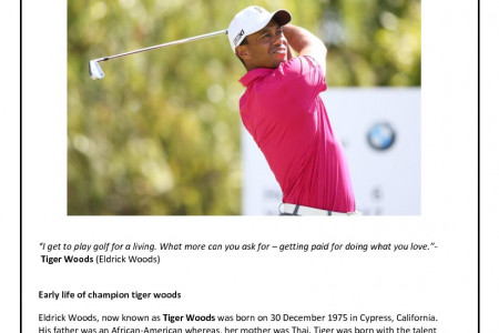 The Life and Times of Tiger Woods Infographic