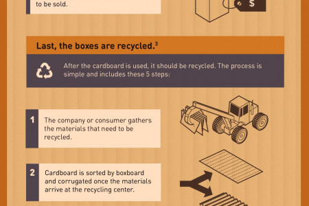 The Life of a Cardboard Box Infographic