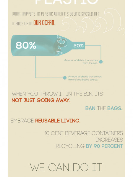 The Life of Plastic Infographic