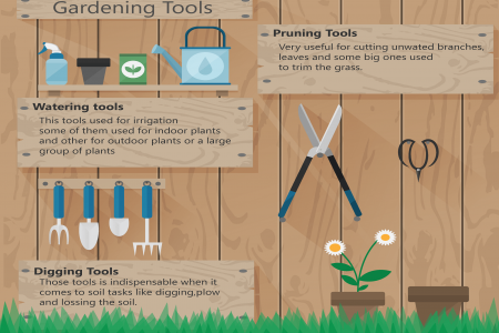 The List of The Top Gardening Tools Infographic