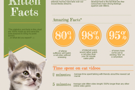 The Magic Of Cat Videos Infographic
