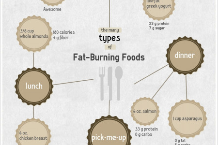 The Many Types of Fat Burning Foods Infographic