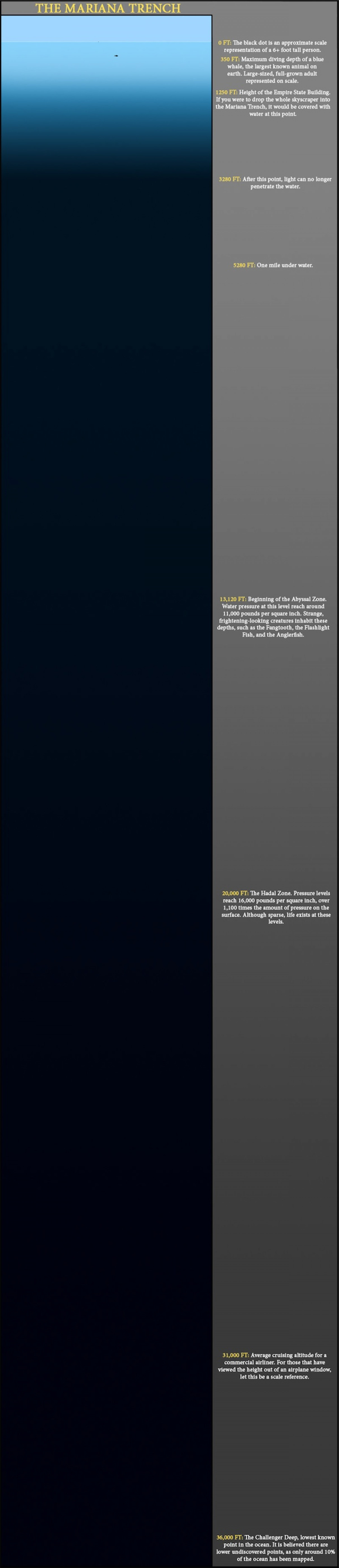 The Mariana Trench Infographic