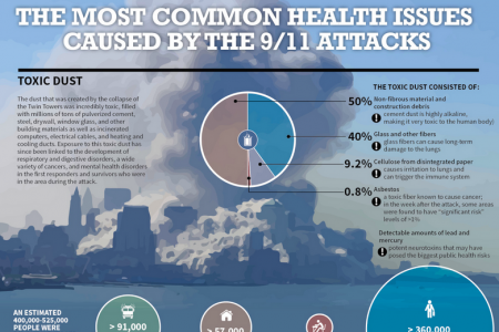 The Most Common Health Issues Caused by the 9/11 Attacks Infographic