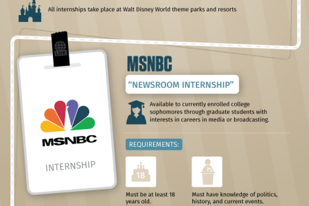 The Most Exciting Summer Internships Infographic