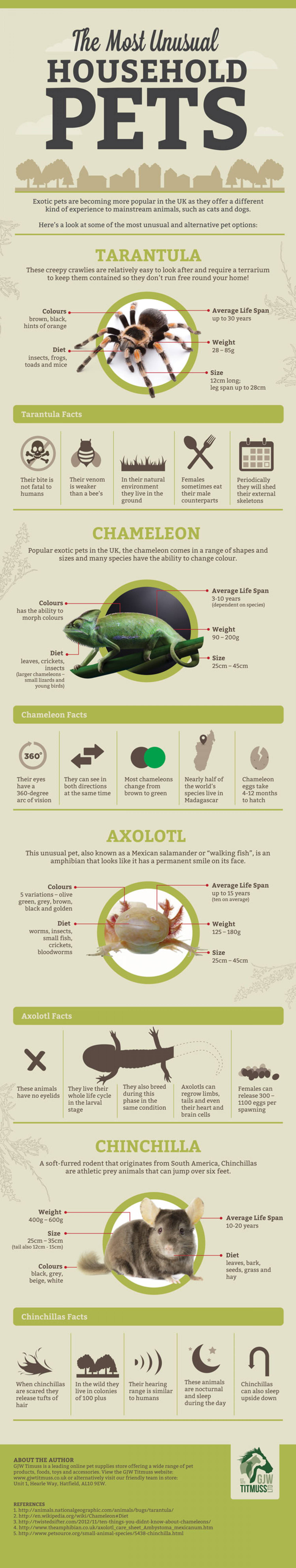 The Most Unusual Household Pets Infographic
