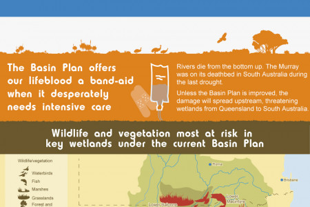 The Murray-Darling Basin Infographic