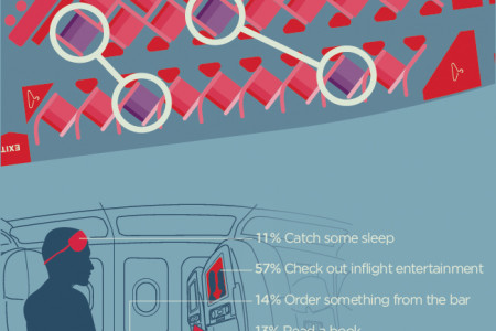 The New Business Traveler Infographic