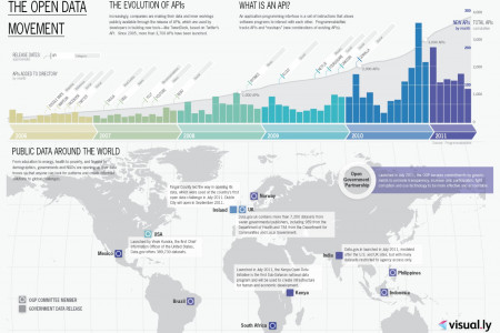 The Open Data Movement Infographic