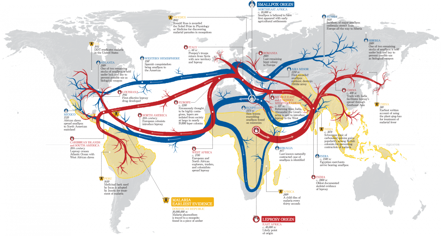 The Origins and Paths of Epidemics Infographic