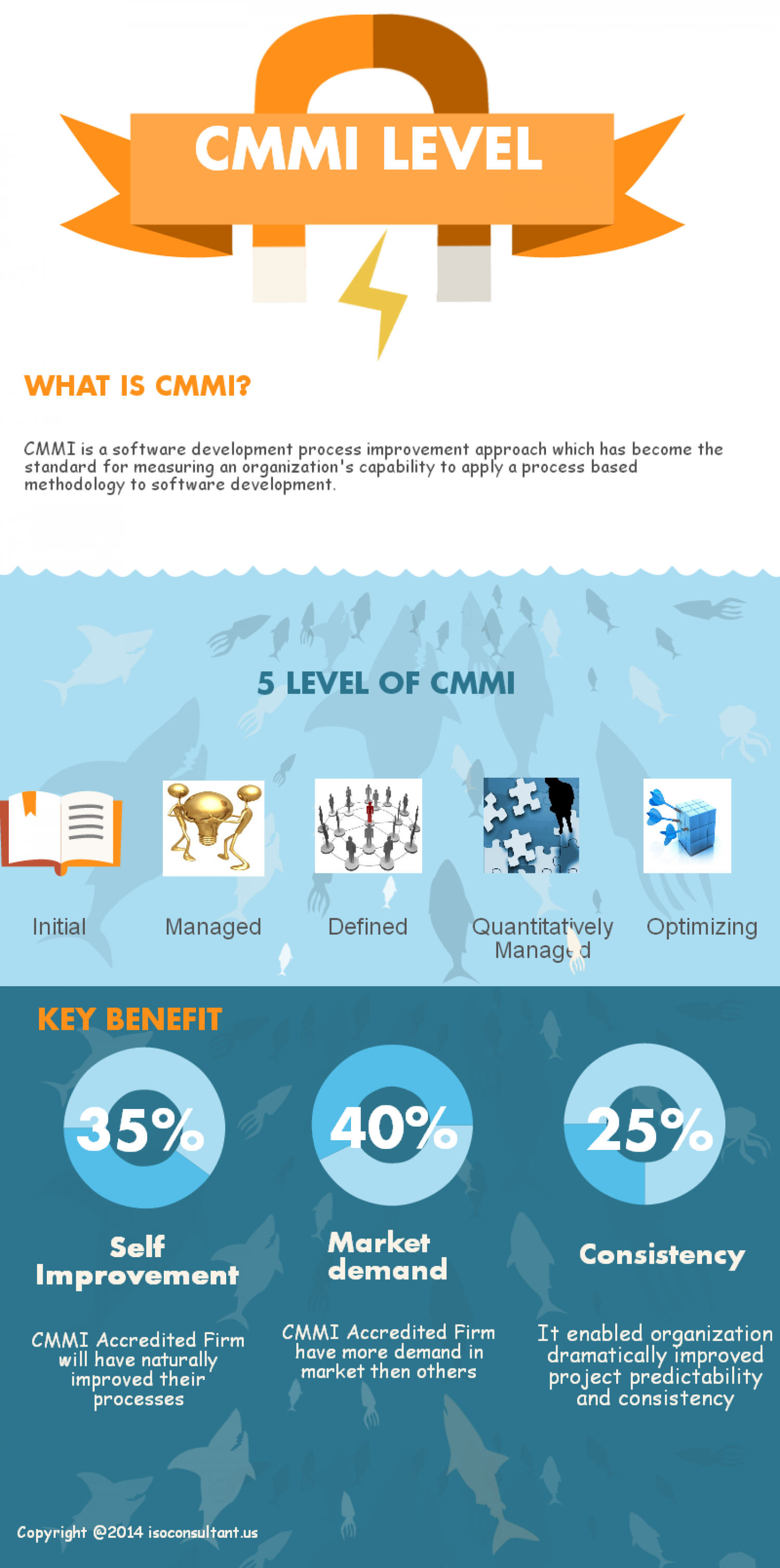 The Overview of CMMI Level Infographic