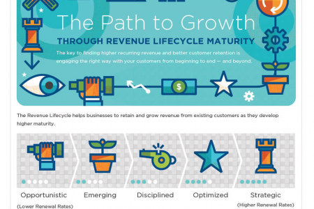 The Path to Growth Through Revenue Lifecycle Maturity  Infographic