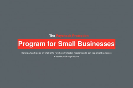 The Paycheck Protection Program for Small Businesses Infographic