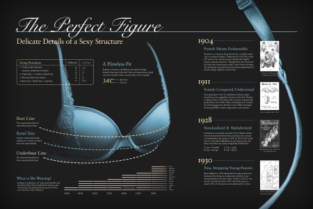 The Perfect Figure Infographic