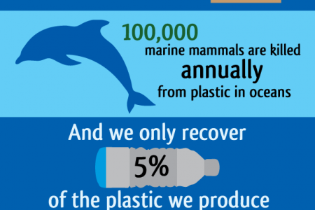 The Plastic Problem Infographic