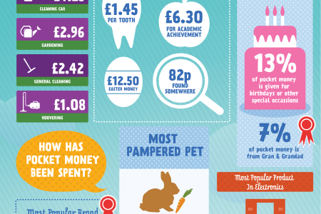 The Pocket Money Index - July 2013 Infographic