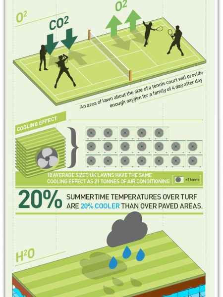 The Power Of Green Infographic