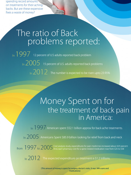 The price tag of Back Pain Infographic