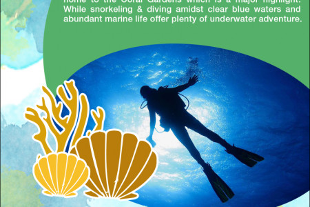 The Pristine Coastlines of Sri Lanka Infographic