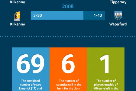 The Race for Liam - GAA 2013 Infographic
