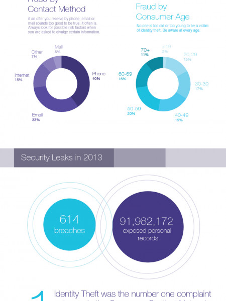 The Rise in Identity Theft Cases Infographic
