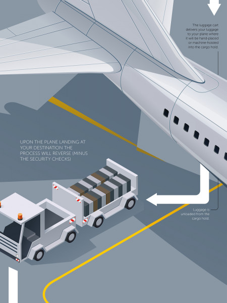 The Road of the Luggage Infographic