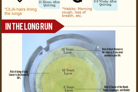 The Road To recovery: What Happens When You Quit Smoking Infographic