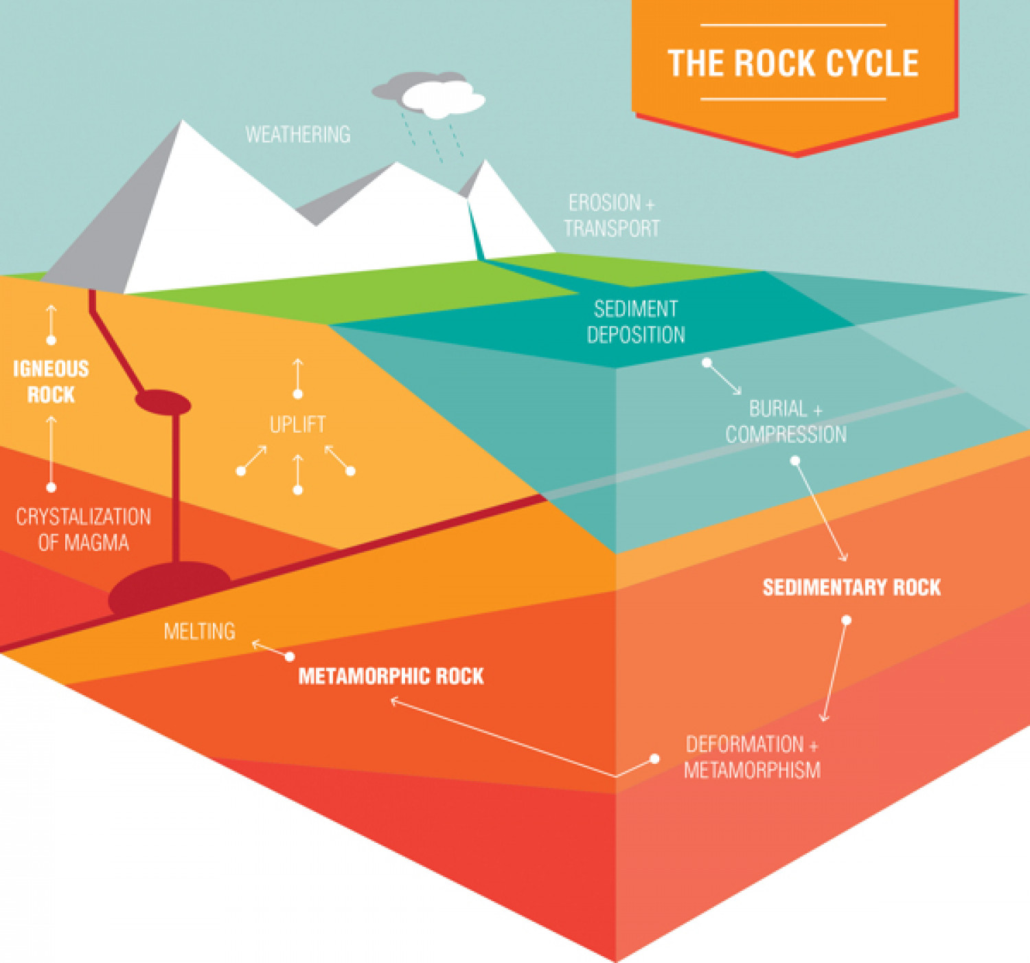 the rock cycle This is the simple rock cycle found in many texts your students may be expected to understand it note the one-way paths (follow the arrows.