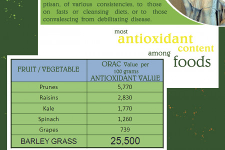 The Sante Barley Solution Infographic