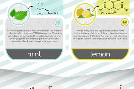 The Science Behind Food Sensations Infographic