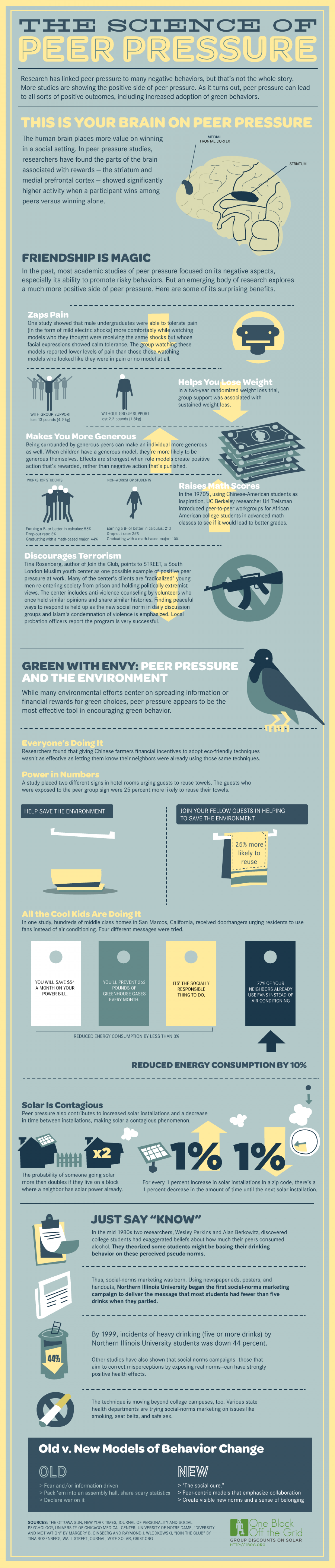 The Science of Peer Pressure Infographic