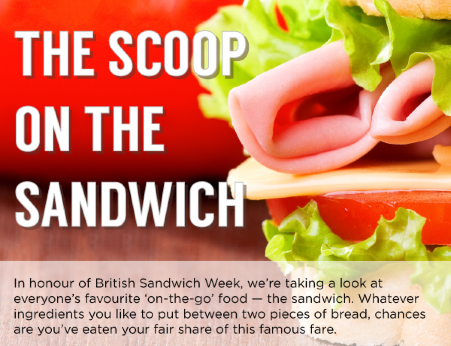 The Scoop on the Sandwich Infographic