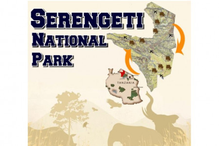 The Serengeti National Park -What The Endless Plains Hold For You To Explore? Infographic
