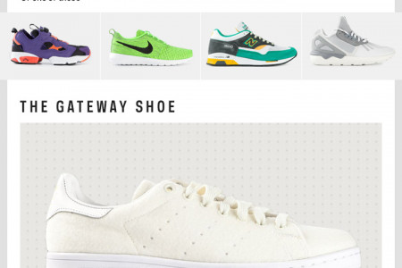 The Sneaker Shortlist Infographic