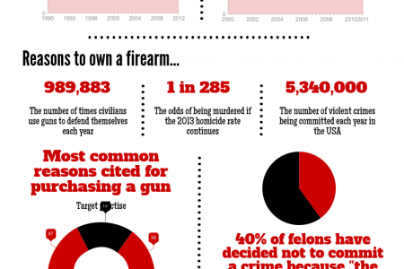 The State of Gun Ownership in the USA Infographic