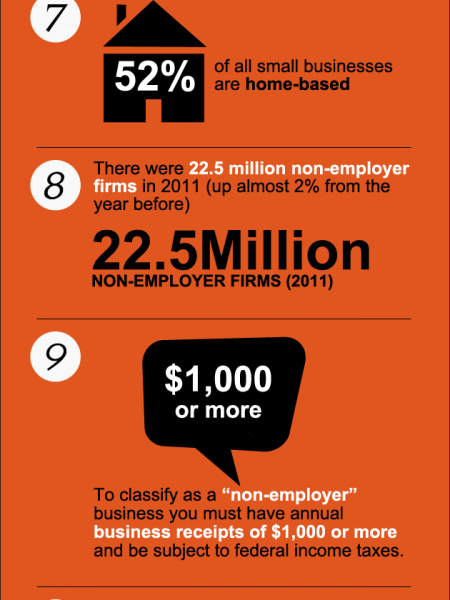 The State of the US Small Businesses Infographic